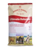 Dodson & Horrell Ultimate Balancer 20kg